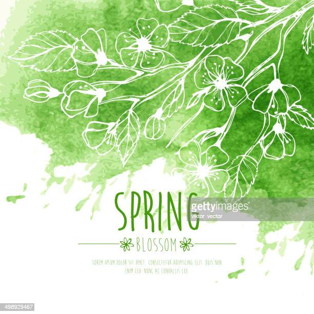 咲き乱れる春のブランチ。ベクトルイラストレーション