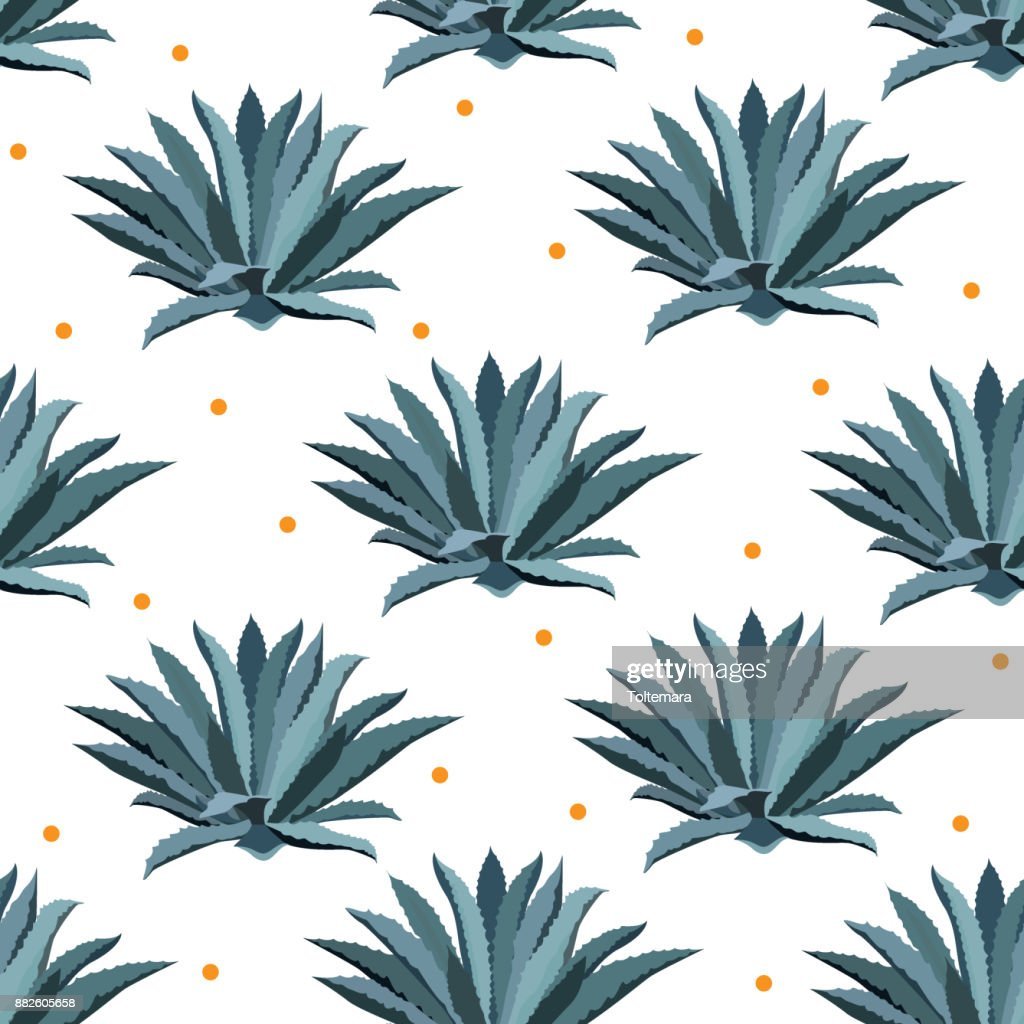 Blue agave vector seamless pattern. Background for tequila packs, superfood with agave syrop, and other. Succulent, cactus wallpapers.