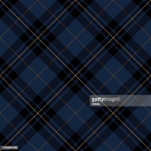 ブルーとブラック スコティッシュ タータン プレイド テキスタイル パターン - 北ヨーロッパ点のイラスト素材/クリップアート素材/マンガ素材/アイコン素材