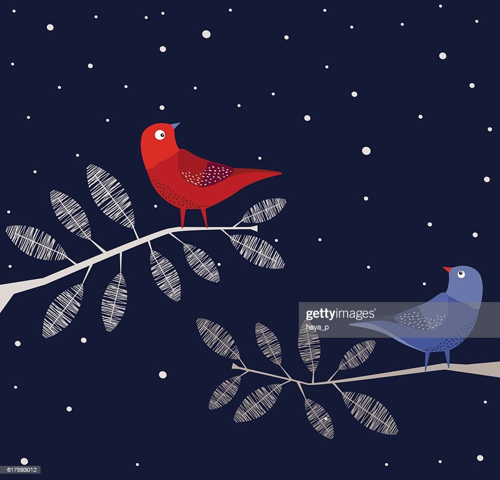 Blue and Red  Birds on branch, Night : stock illustration
