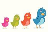 Blue bird accompanied by multicolored birds