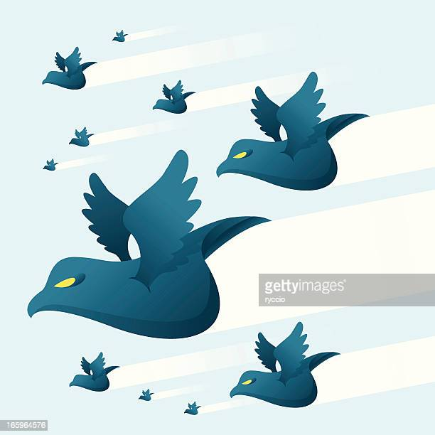 Blue birds storm
