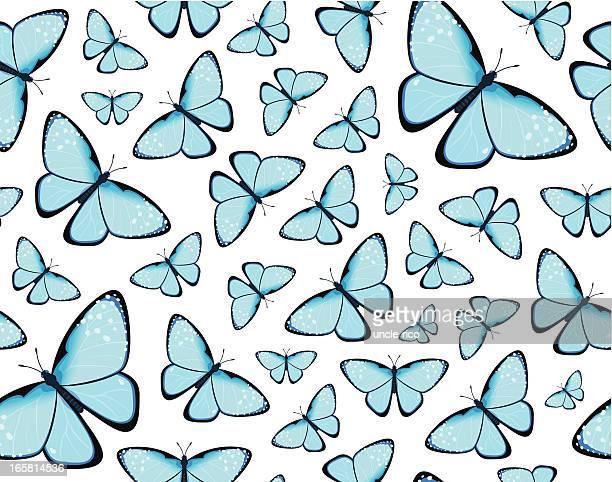 ilustrações, clipart, desenhos animados e ícones de borboletas azuis sem costura padrão - borboleta