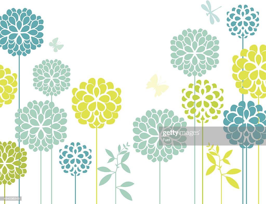 Blue chrysanthemum