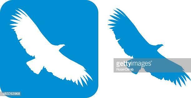 Condor-da-azul ícone