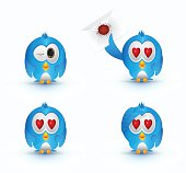 blue cute bird love eye