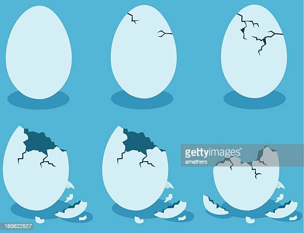 blue eggshells - cracked stock illustrations