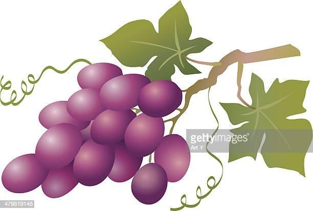 Azul uvas