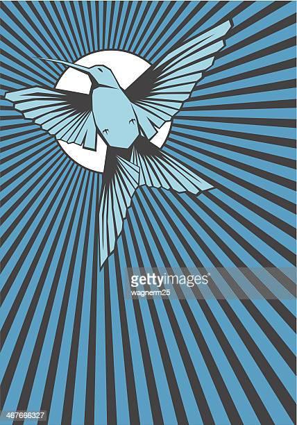 hummingbird フライングブルーの前で、美しいサン