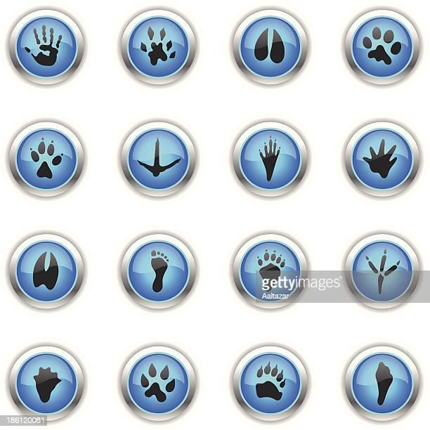 blue icons - animal tracks - animal track stock illustrations, clip art, cartoons, & icons