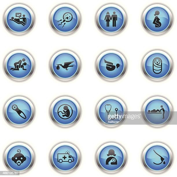 blue icons - pregnancy & childbirth - animal fetus stock illustrations, clip art, cartoons, & icons