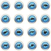 Blue Icons - Wild Animals