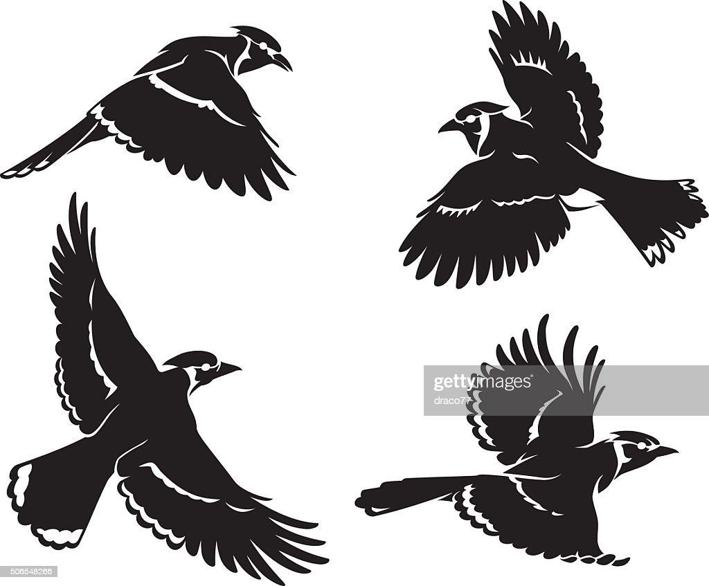 Blue Jay Bird Set Silhouette