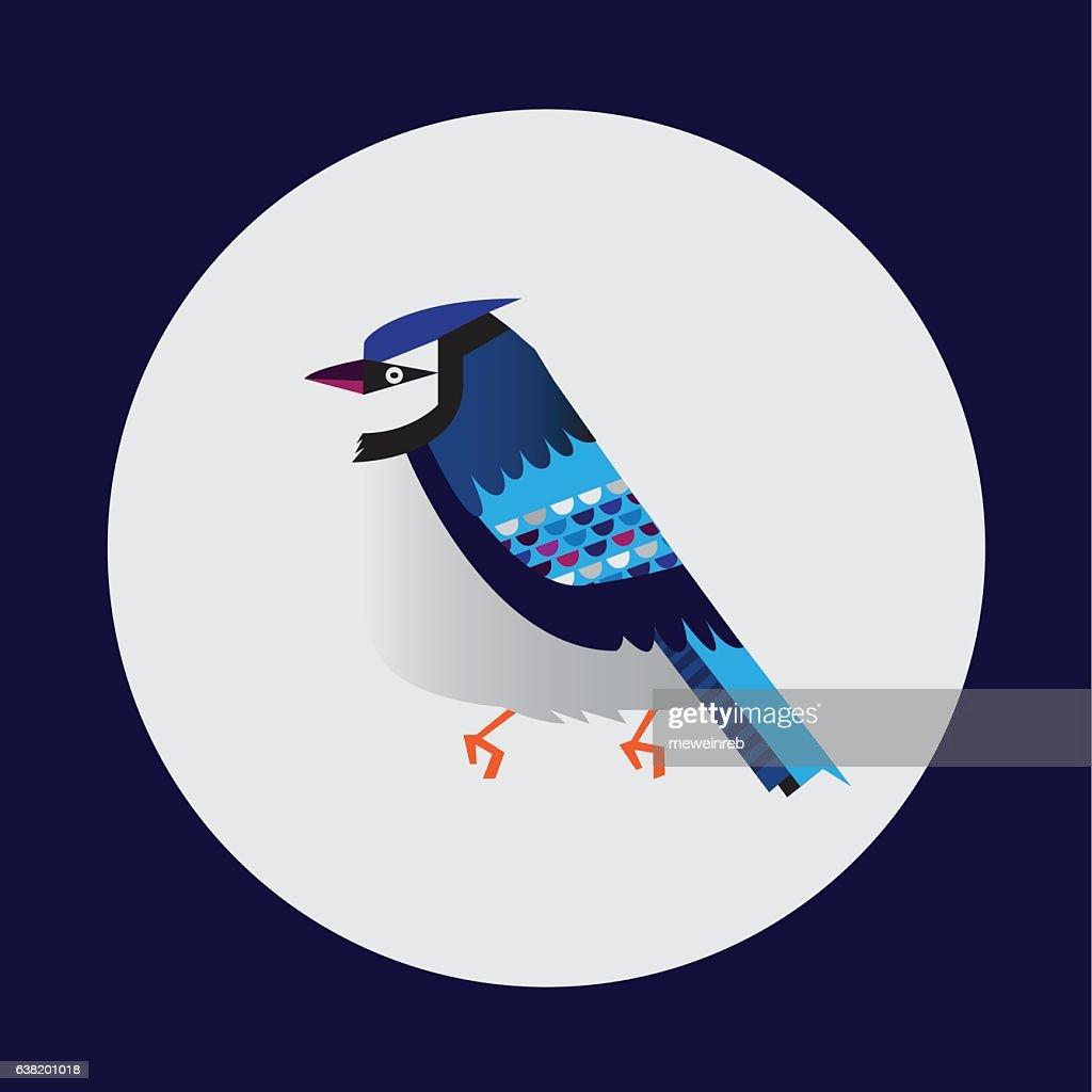 Blue jay Bird Vector