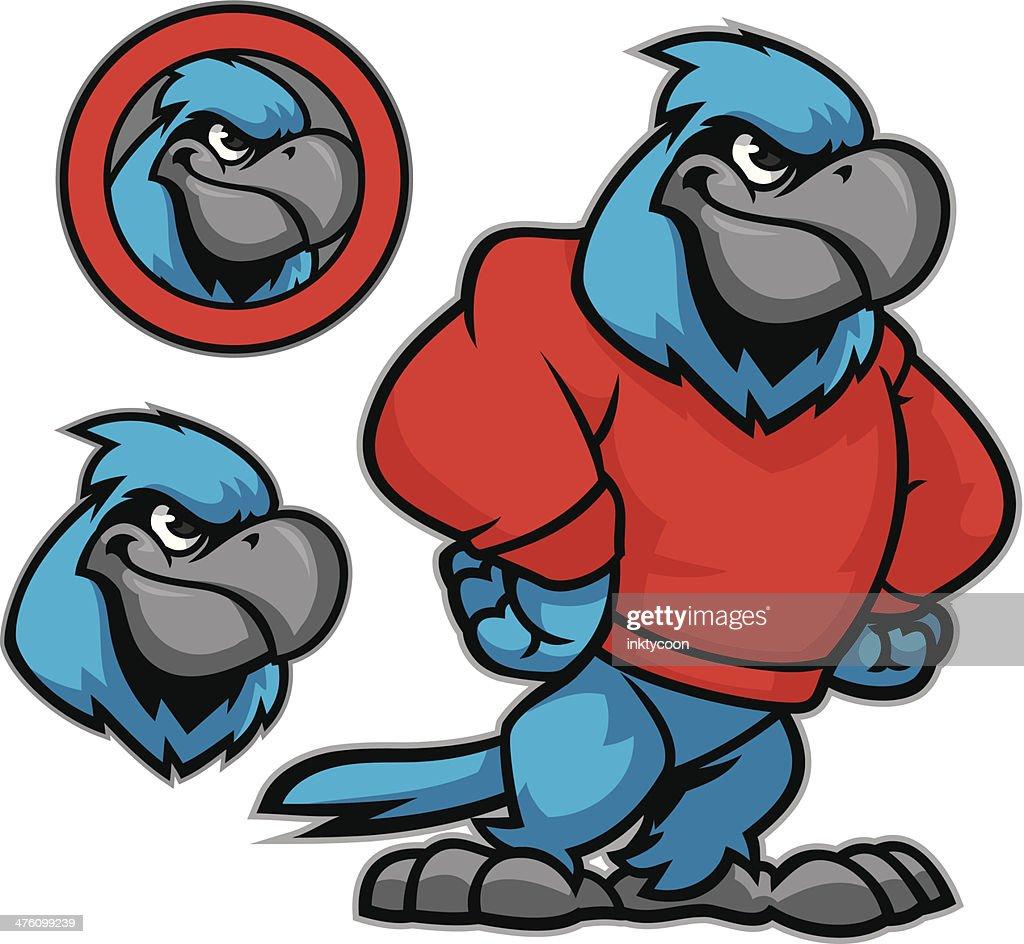 Blue Jay Tough Guy