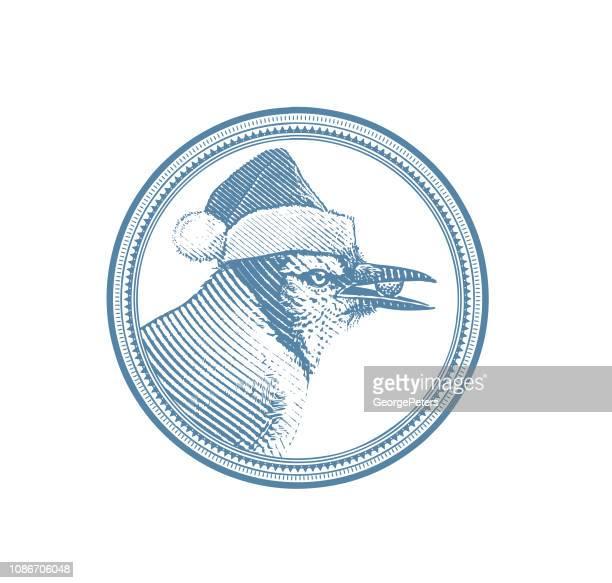 blue jay wearing santa hat - desaturated stock illustrations, clip art, cartoons, & icons