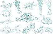 Blue outline hand drawn vegetable set