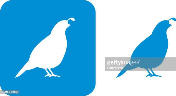 blue quail icons - quail bird stock illustrations, clip art, cartoons, & icons