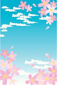 Blue sky and cherry blossoms