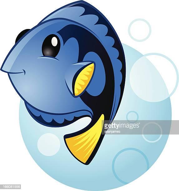 blue tang marine fish - acanthuridae stock illustrations, clip art, cartoons, & icons