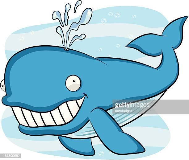 blue whale cartoon - blue whale stock illustrations, clip art, cartoons, & icons