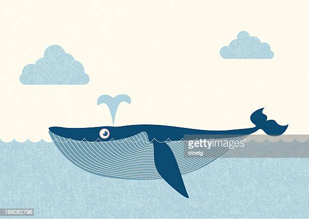 illustrations, cliparts, dessins animés et icônes de bleu whale - baleine