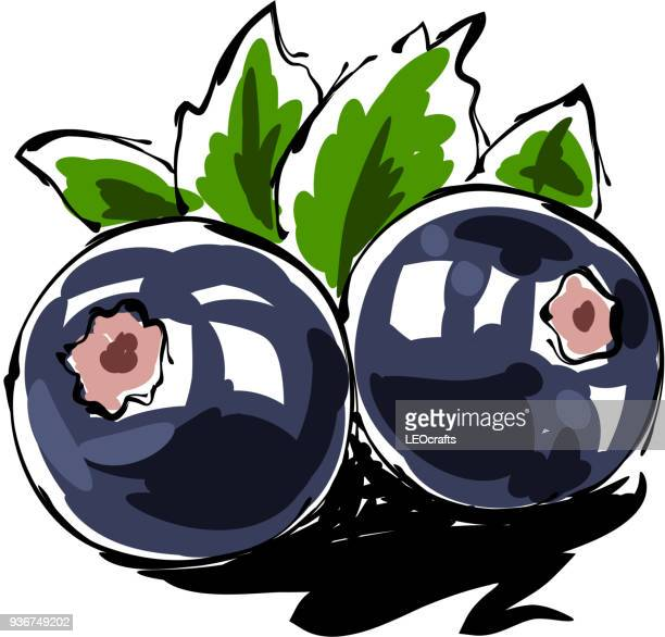 blueberry drawing - blueberry stock illustrations, clip art, cartoons, & icons