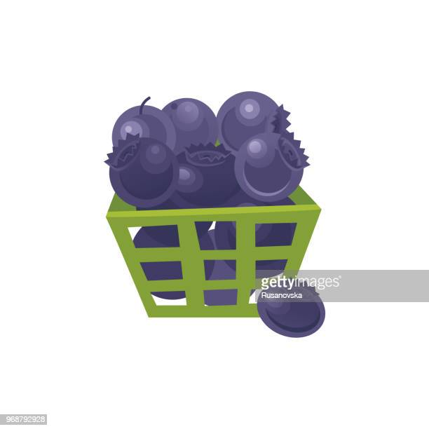 blueberry icon - blueberry stock illustrations, clip art, cartoons, & icons