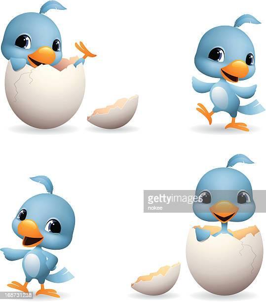 Bluebird-neu geboren