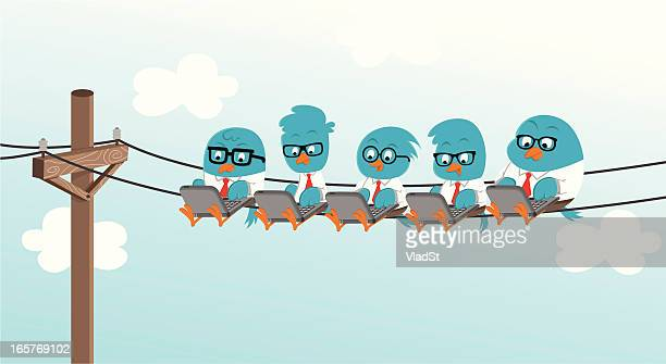 bluebirds geek office - rookery stock illustrations