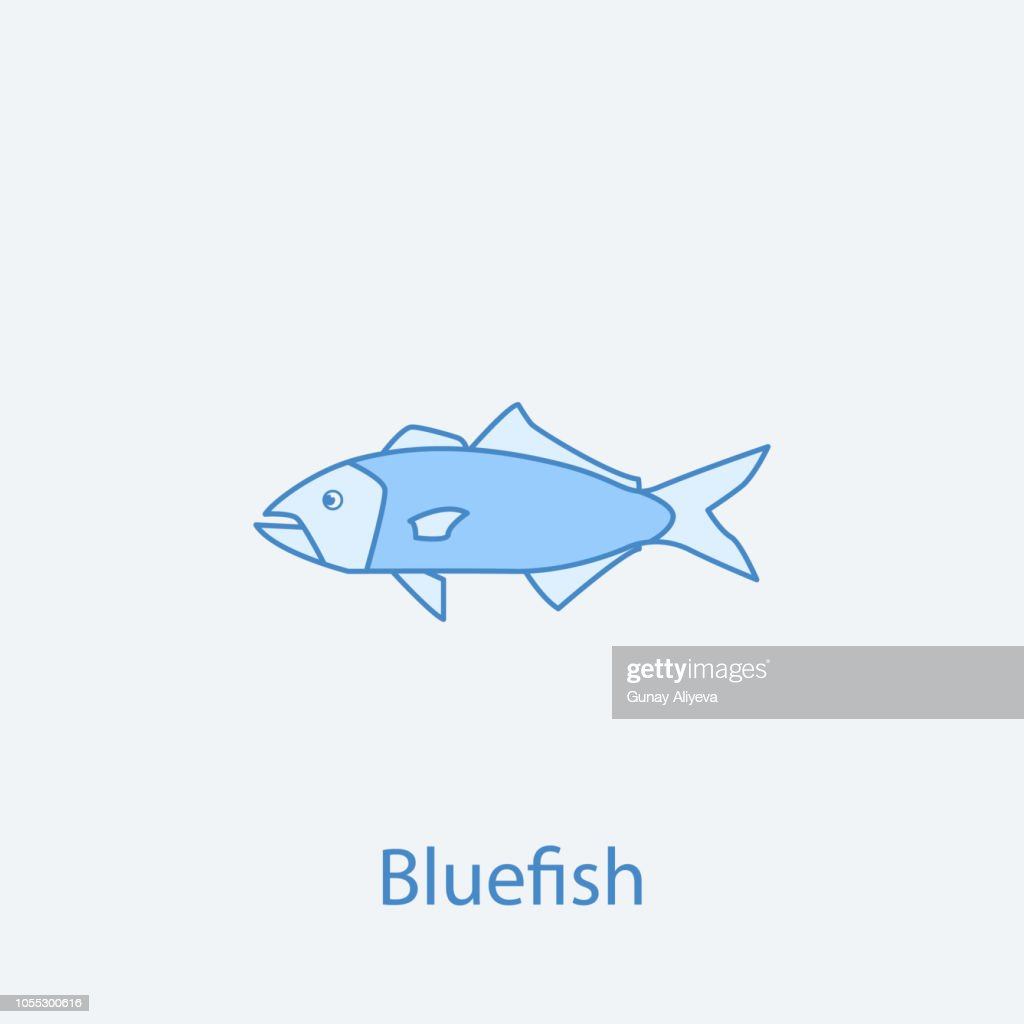 bluefish 2 colored line icon. Simple light and dark blue element illustration. bluefish concept outline symbol design from fish set