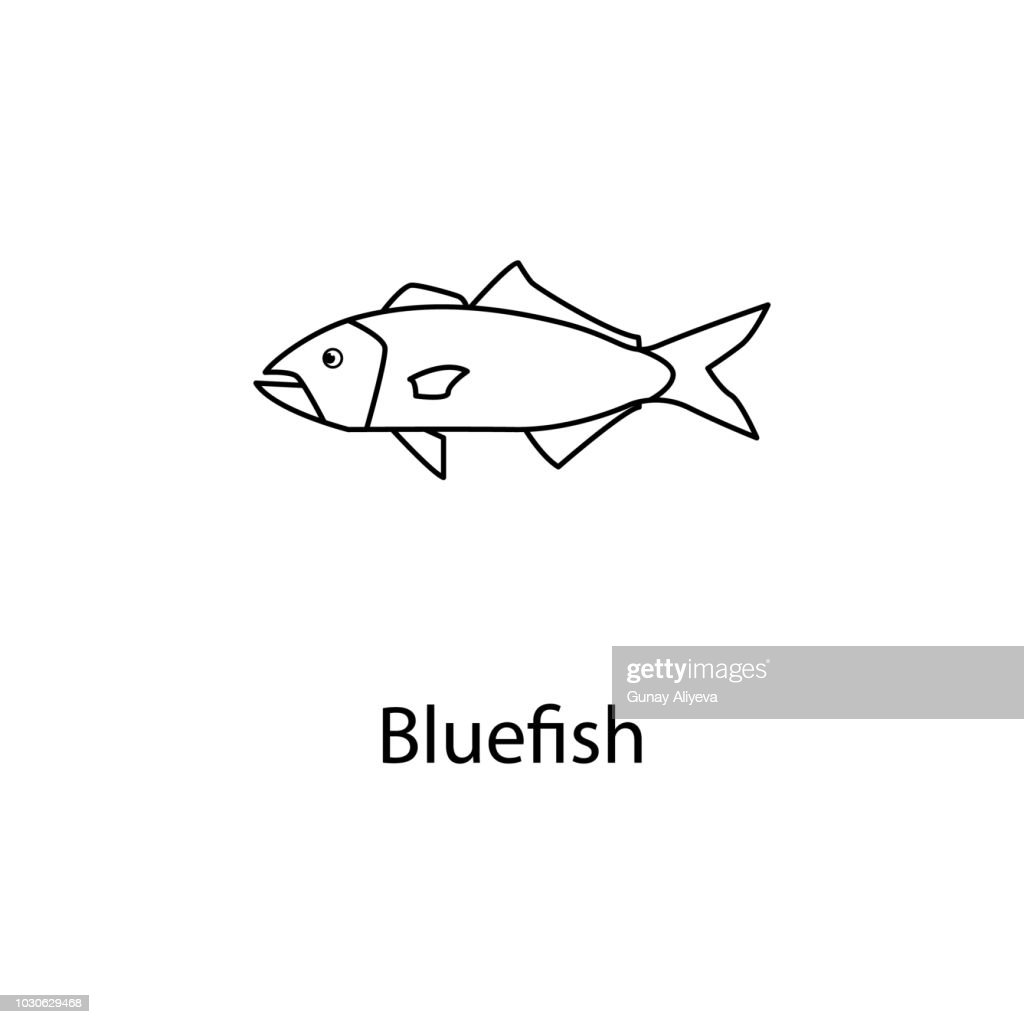 bluefish icon. Element of marine life for mobile concept and web apps. Thin line bluefish icon can be used for web and mobile. Premium icon