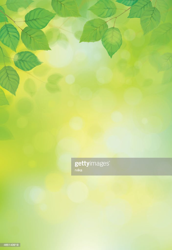 Blurred sunshine background with vector green leaves