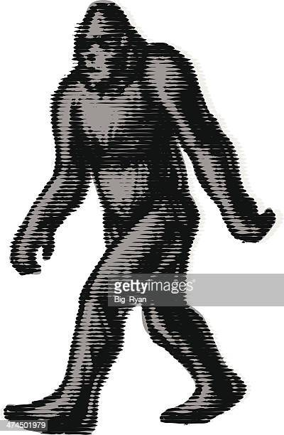 blurry bigfoot - bigfoot stock illustrations