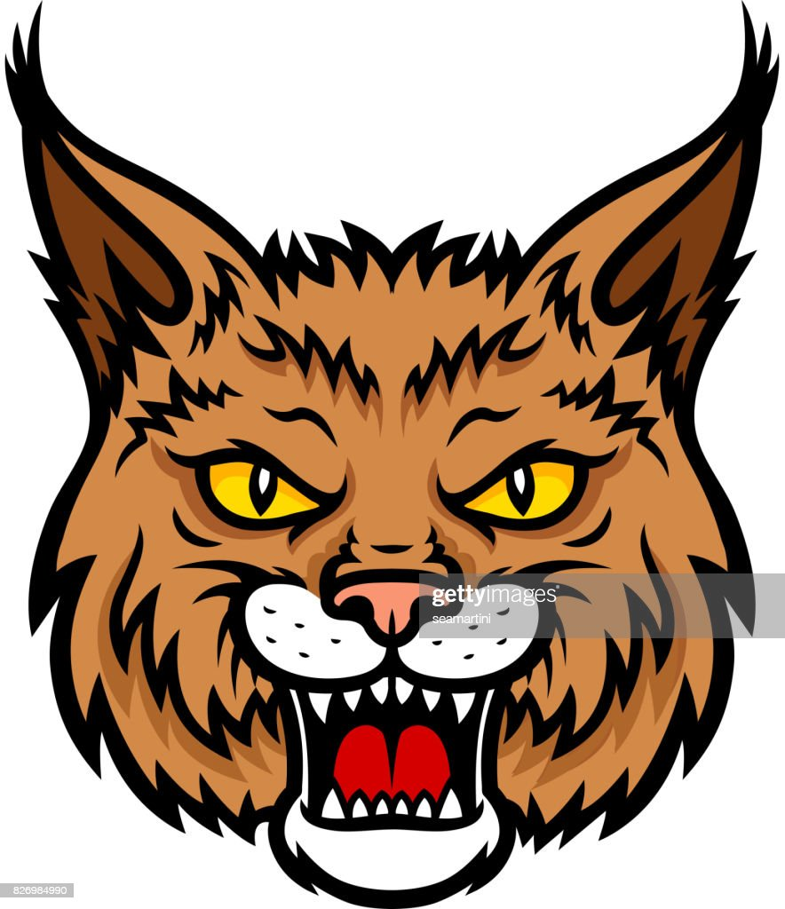 Bobcat lynx head muzzle vector mascot icon