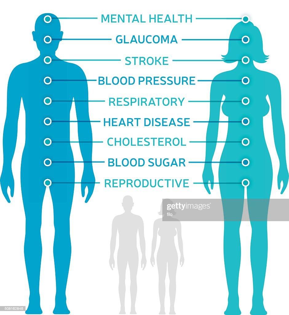 Body Health Diagram