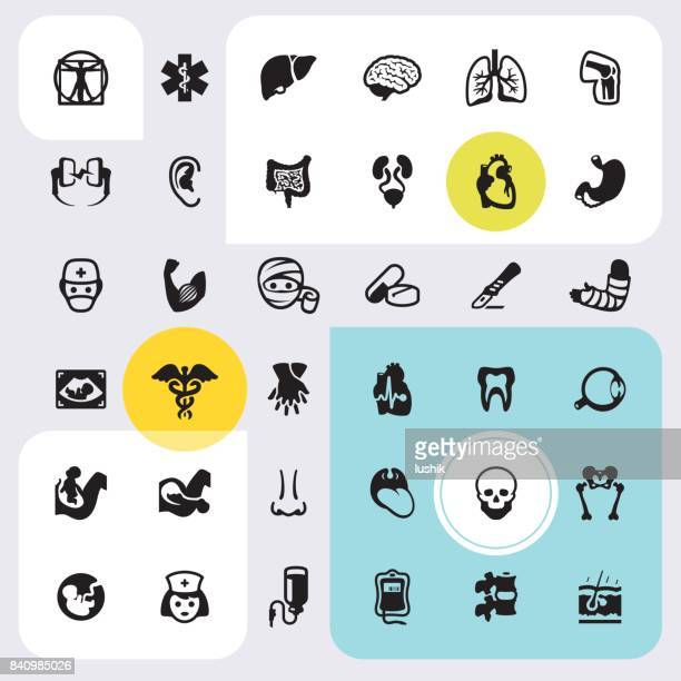Body part and Internal organ - icons set
