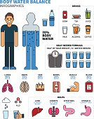 Body Water Infographics with Human Organs, Drinks and Calculatio