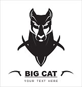 Bold Big Cat