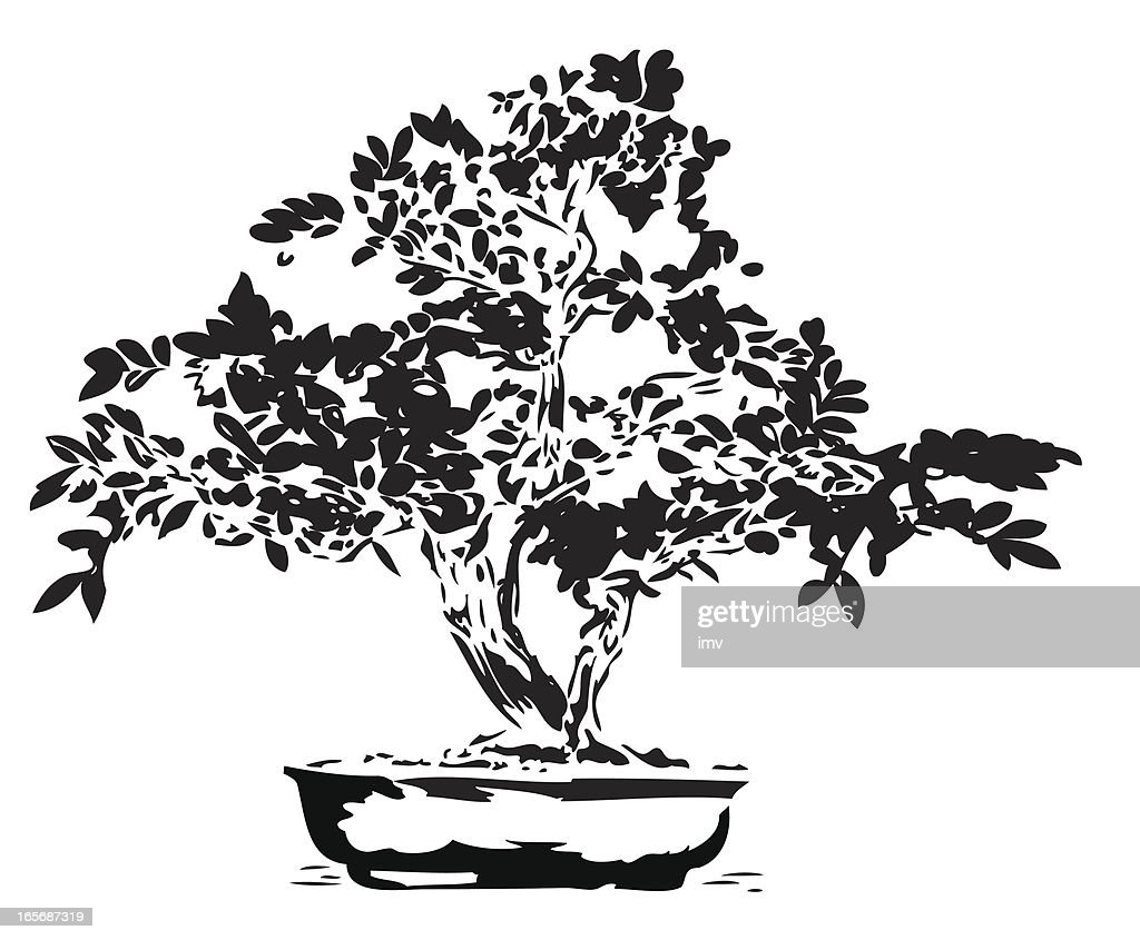Bonsai illustration in black lines
