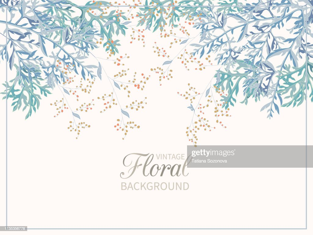 Border of field flowers blooming of wormwood on white background. Spring floral background.