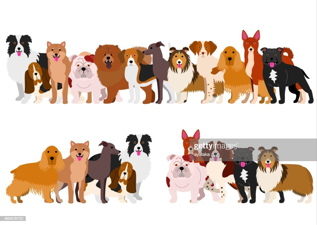Border of medium dogs set