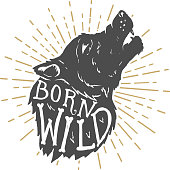 Born wild. Hand drawn wolf illustration with lettering.