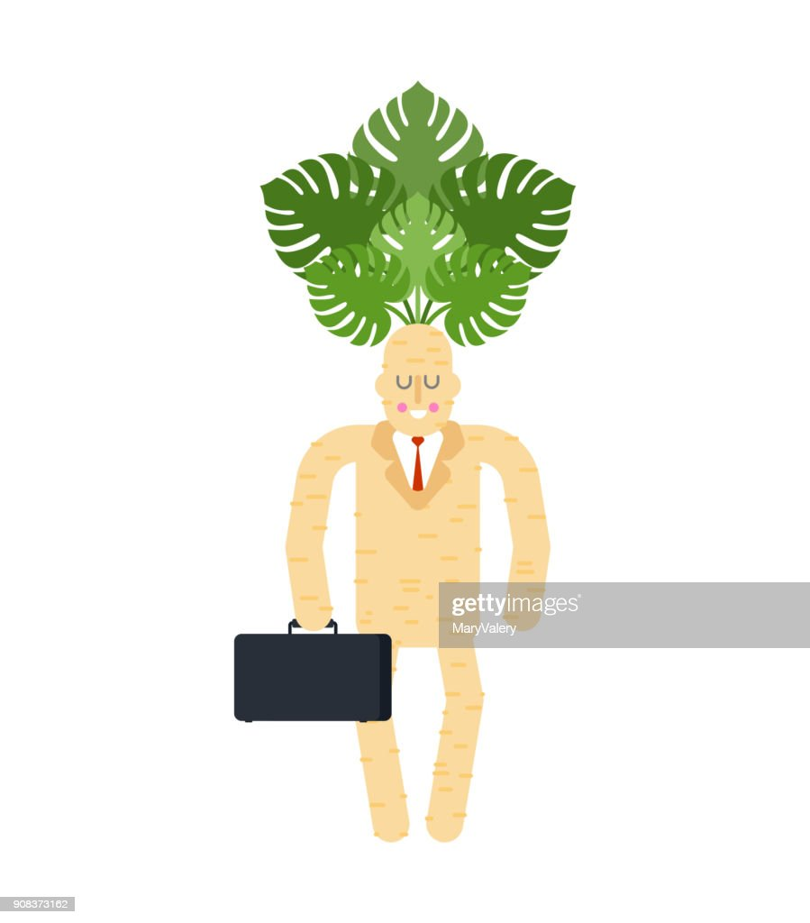 Boss Mandrake root. Tie and case. Magic businessman