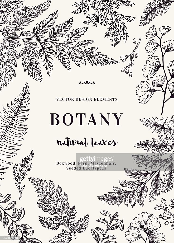 Botanical card for with leaves.
