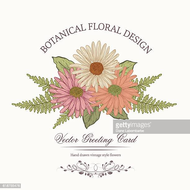botanical flowers invitation template - gerbera daisy stock illustrations, clip art, cartoons, & icons