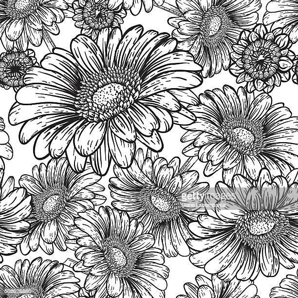 botanical flowers seamless gerbera dasiy pattern - gerbera daisy stock illustrations, clip art, cartoons, & icons