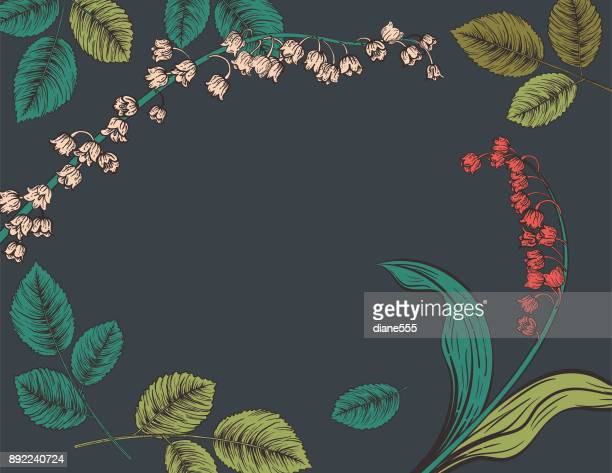 botanical hand drawn floral background - botany stock illustrations