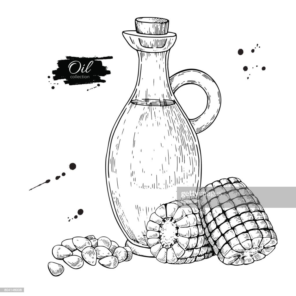 Bottle of corn cooking oil. Vector Hand drawn illustration. Glass pitcher vintage