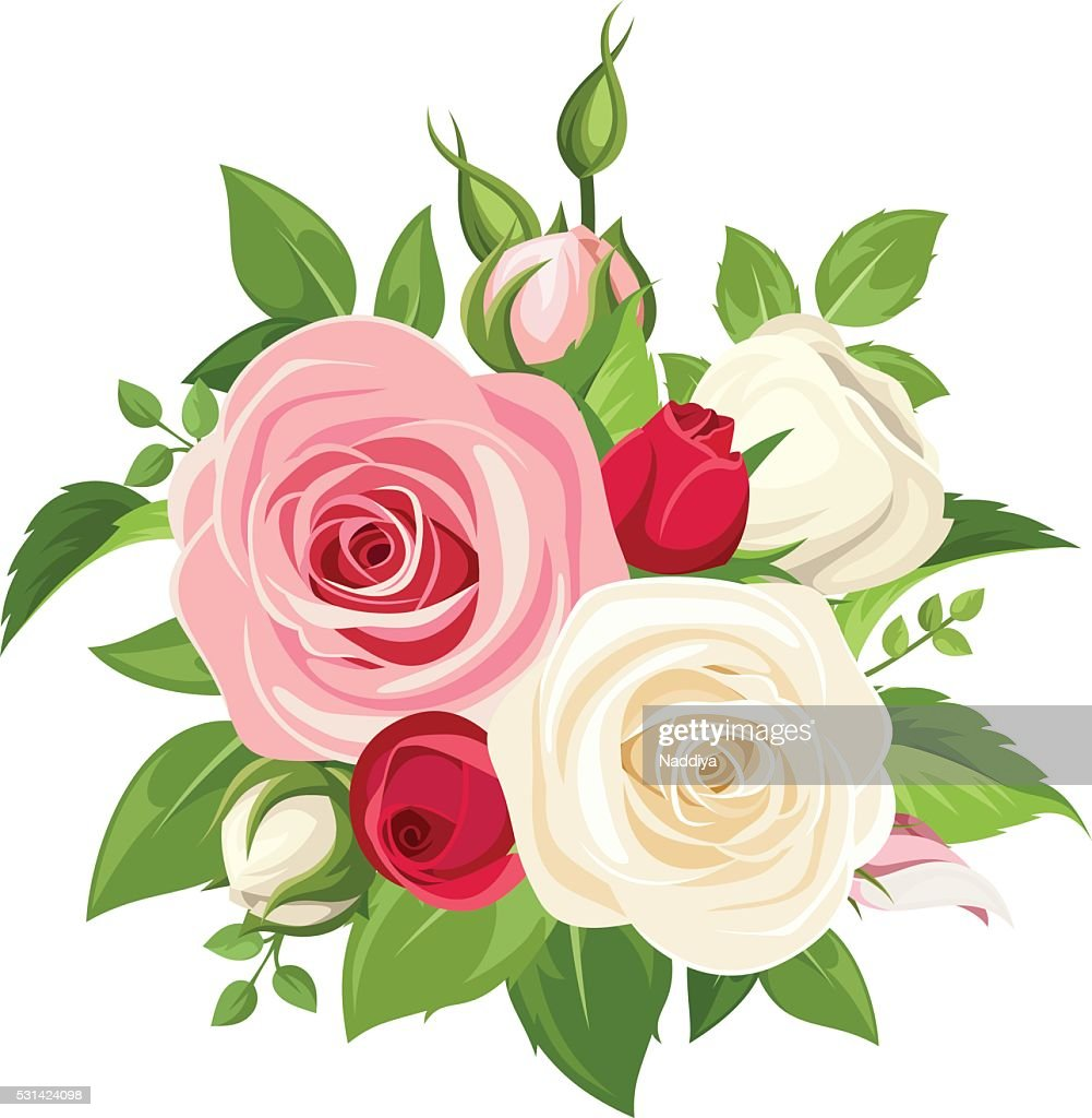 Bouquet of pink and white roses. Vector illustration.